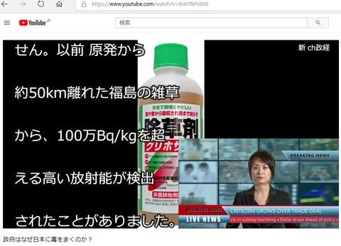 P2_Freemaisons_happen_911_and_Fukushima_mass_murder (4)