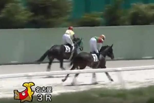 動画】丹羽騎手、負けた腹いせに...