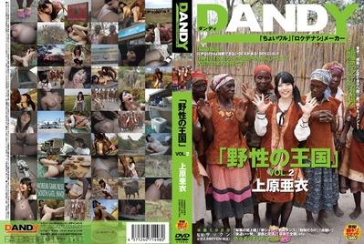 1dandy00368pl