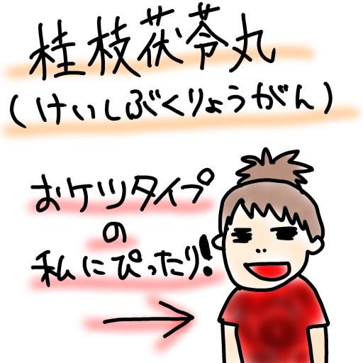 効果 茯苓 丸 桂 枝