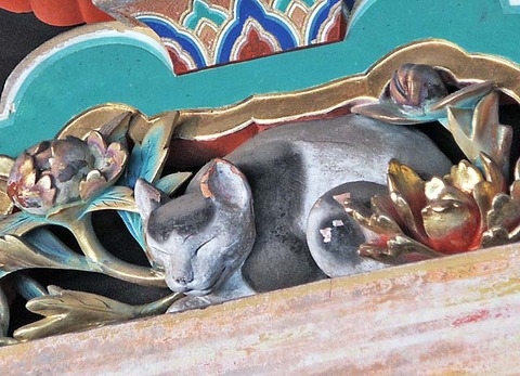 SleepingCatNikko