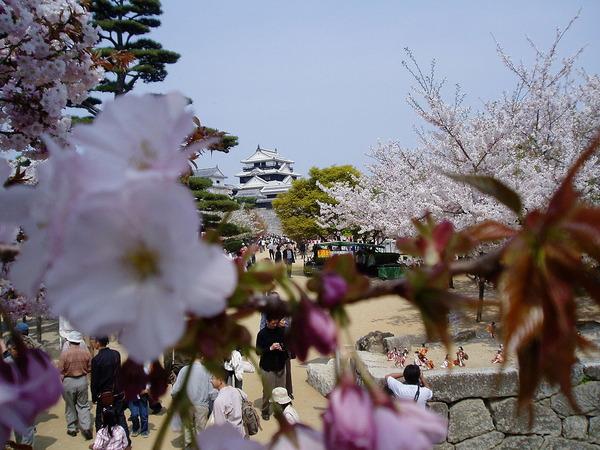 1280px-Matsuyama_castle_(Iyo)2