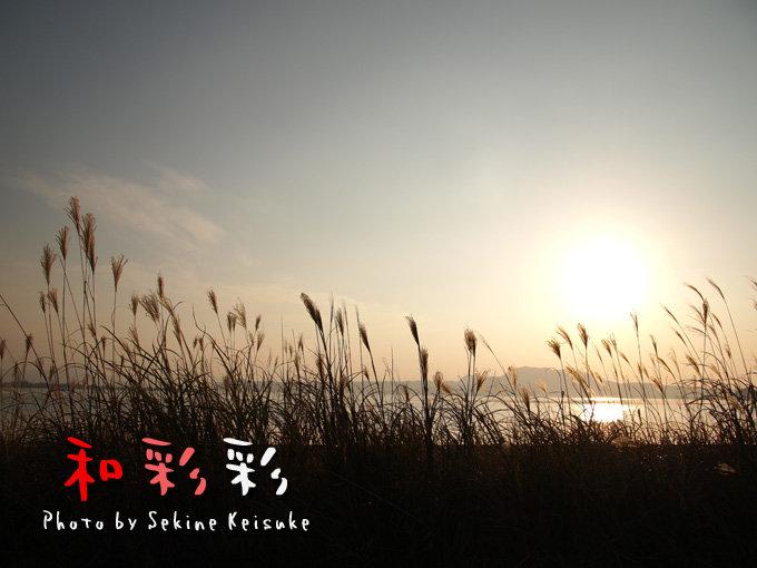 2330夕陽とススキ