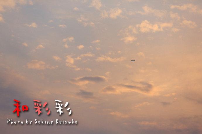 夕空を飛ぶ