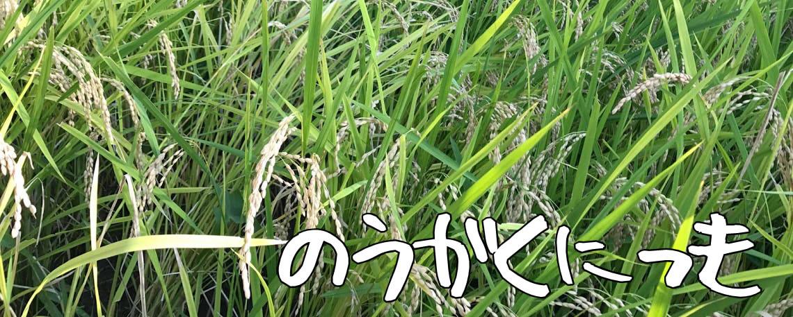 農楽日記 イメージ画像