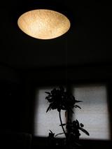 柿渋和紙タペストリー