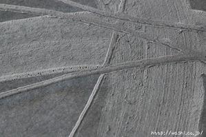珪藻土を使った創作デザイン和紙 (デザイン部アップ)