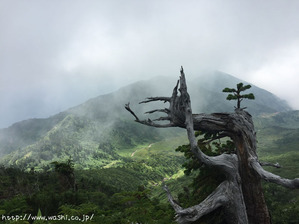 2016年8月白山登山(ちょっとした風景も絵になりますね♪)