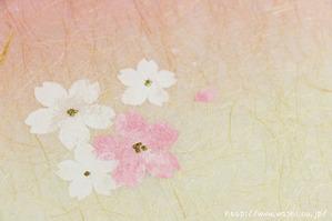 創作デザイン和紙4(花柄)アップ