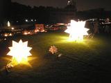 光るイガグリ(金澤 夕暮祭り2007)