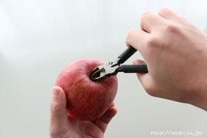 ヘタをニッパーでカットする(リンゴ型オブジェの作り方)