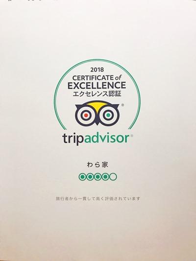 trip advisor - コピー