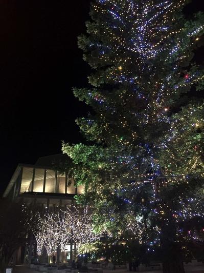 西宮芸文で開催の澤野工房さんのクリスマスジャズコンサート