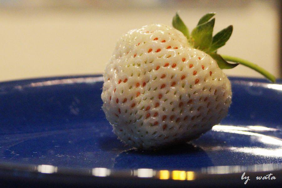a strawberry -1