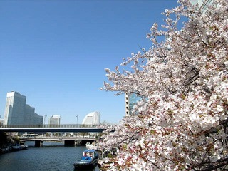 from.横浜-2