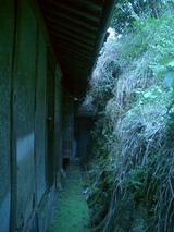 五明の家の佇まい-裏庭