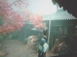 「龍馬伝」名場面シリーズ〜龍馬の休日