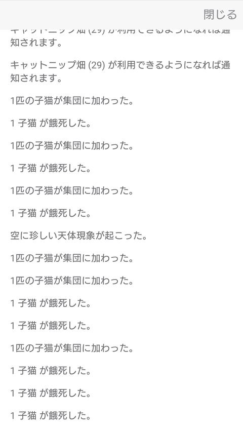 Screenshot_20191117-213601
