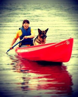 カヌー犬2