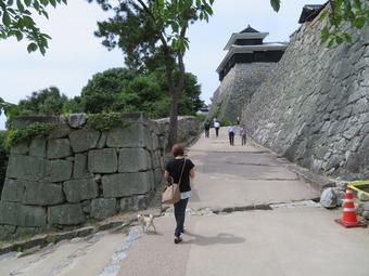 松山城 犬 リフト 2
