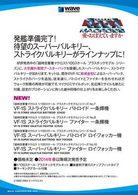 HS2013_POP_A5_Val