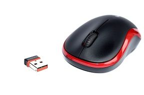 mouse-20223_960_720