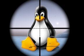 linux_l_023