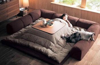 kotatsu_table_bed_from_japan