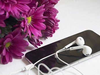 flower-3041518_960_720