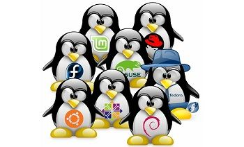 linux-distros-100724403-large