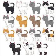 thumbnail_cat_moyou