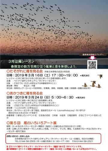 2018年度アート展&観察会広報資料ポスター