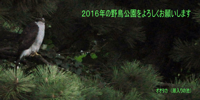 20160101_2