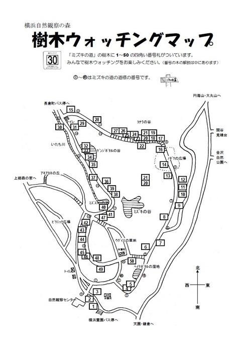 20150901樹木ウォッチングマップ