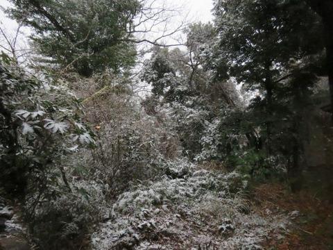 サイズ修正雪つもり