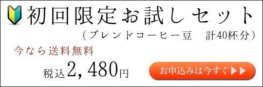 otameshi のコピー