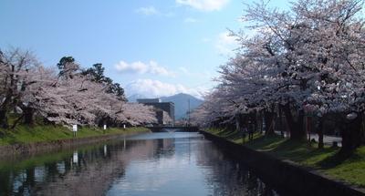 20100424鶴岡公園2