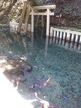 鹿島神社03