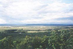 釧路湿原だよ