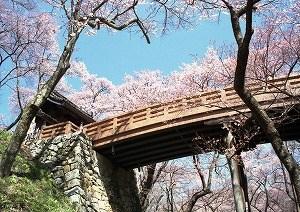 s-公園橋
