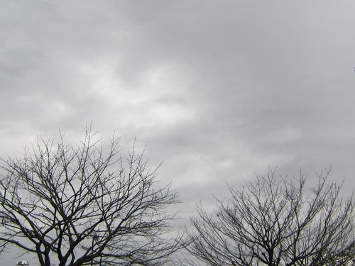 26日 午後の空