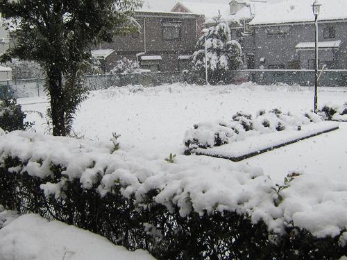 雪景色 29日11