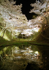 s-高遠公園夜景3
