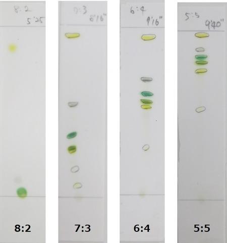展開液の各割合8月