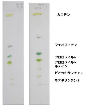 73の展開液 右の2つは9月2