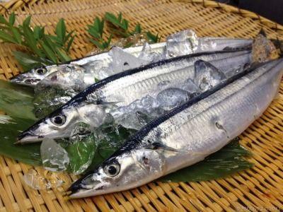 【画像あり】秋刀魚とかいうバカ美味い旬魚wwwww
