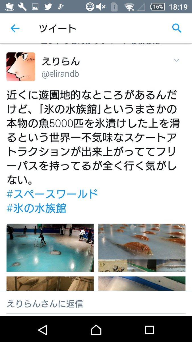 氷漬け魚の水族館問題への地元キタキュウマンのツイートに考えさせられる