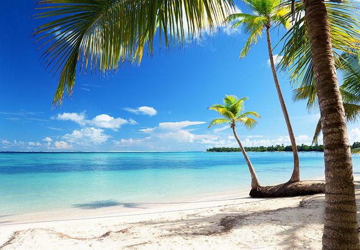 南の島に行きたいンゴオオオオオオオオ!!!!!