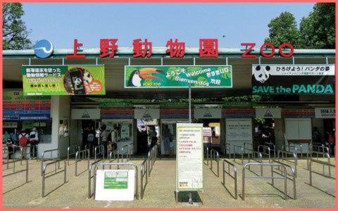 上野動物園「学校にいきたくないと思い悩んでいるみなさん。うちに逃げてくればいいよ」