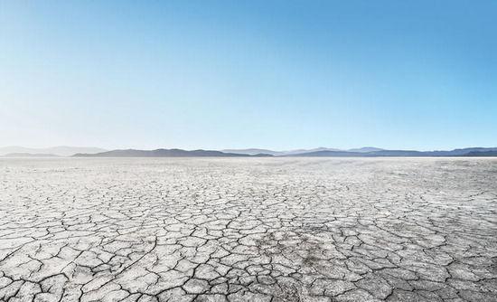 【地球オワタ】温室効果ガスを吸収して保持する植物と土壌の「貯蔵機能」がもうすぐ限界に・・・